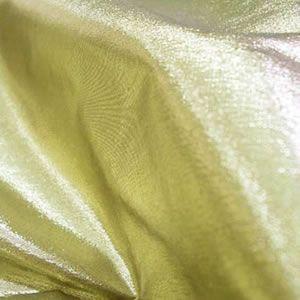 Tissue Fabric 01