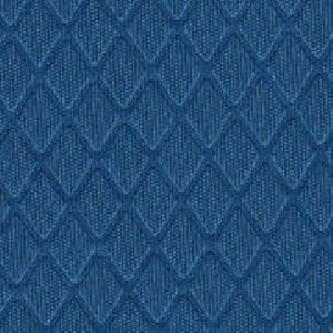 Polyester Interlock Fabric
