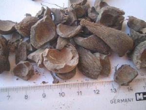 Palm Kernel Shells For Fertilizer