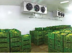Banana Cold Storage Rental Services