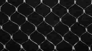 HDPE Knotless Anti Bird Net