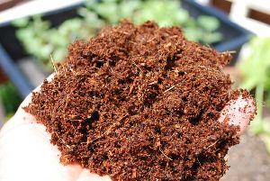 Coconut Fiber Cake