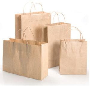 Brown Paper Shopping Bag 02