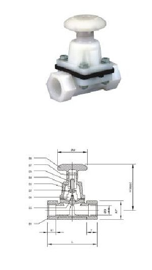 Screw End PP Diaphragm Valves