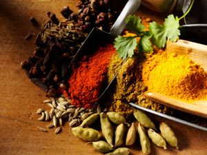 Indian Spices 03