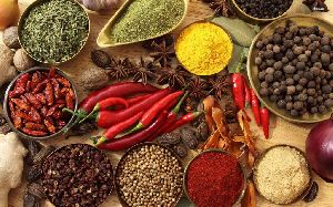 Indian Spices 04