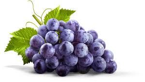 Fresh Grape 02