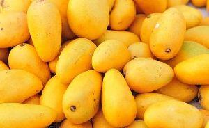 Fresh Mangoes 02