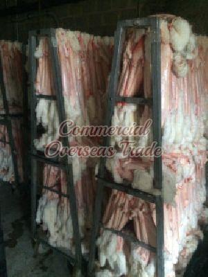 COD 7 Rabbit Skin 11