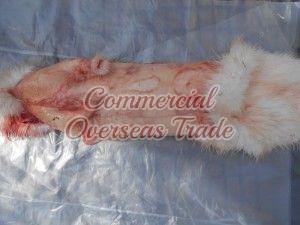 COD 9 Rabbit Skin 06