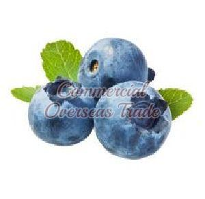 Blueberry Puree
