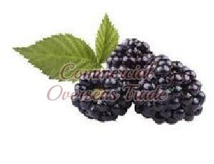 Boysenberry Purees