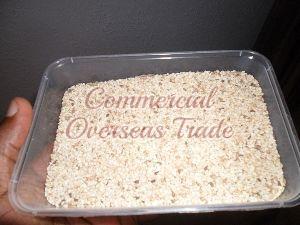 Sesame Seeds 06