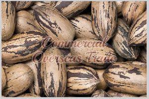 Shelled Pecans