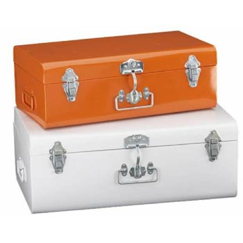 Galvanized Iron Storage Trunk 01