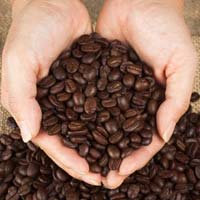 Roasted Coffee Beans 02