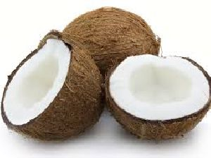Fresh Coconut 05