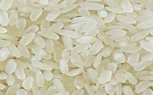 Non Basmati Broken Parboiled Rice