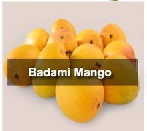 Fresh Mango 05
