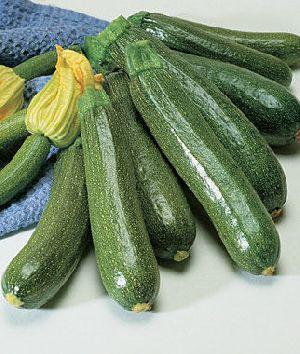 Fresh Zucchini 02