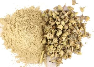 Gokhru Powder