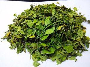Moringa Leaves TBC