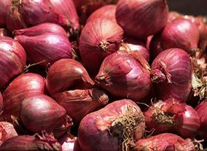 Indian Small Shallot Onion