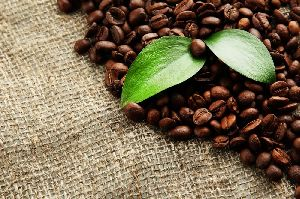 Arabica Coffee Beans 02