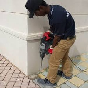 Termite Treatment Services in Sector 10 A Gurugram