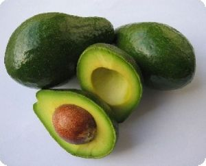 Avocado Butter Fruit