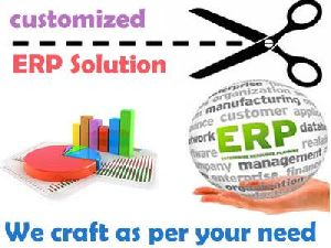 Customized ERP Software Development Services