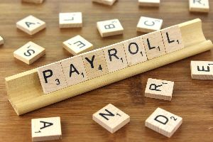 Payroll Software Development Services