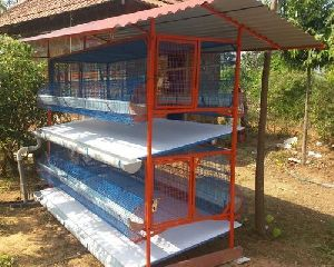 high tech poultry cages