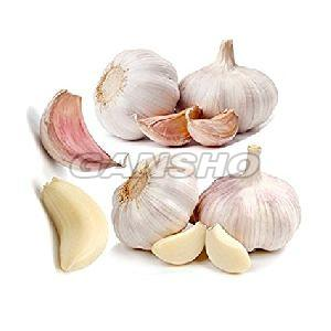 Poondu Fresh Hill Garlic