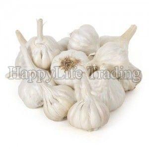 Fresh Small Garlic