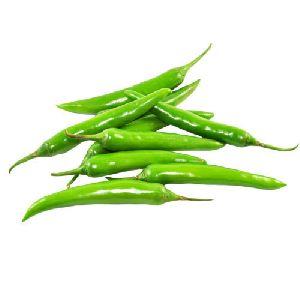 Fresh Green Chili