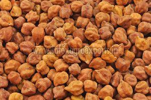 Gram Seeds