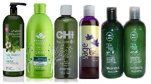 Hair Shampoos