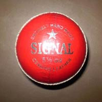 Cricket Ball 07