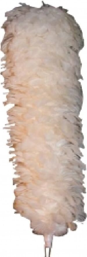 SLE-3296 Hackles and Plume