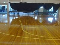 PUD Recommendations For Sports Timber Courts 02