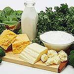 Edible Lactose Manufacturer