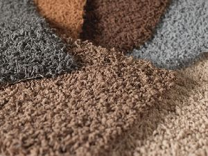 Cut Pile Carpet 05