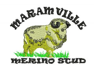 personalized embroidery digitizing