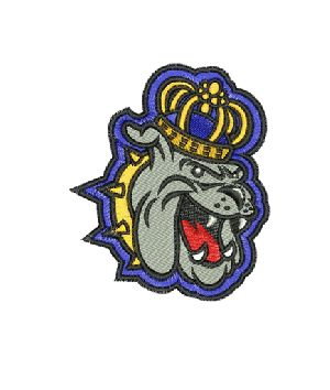 professional embroidery digitizing