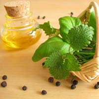 Essential Oil Manufacturer