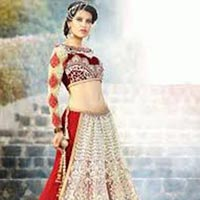 Party Wear Lehenga Choli (DL3)