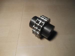 Roller Chain Coupling 01