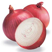 Fresh Onion
