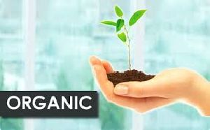 Organic Certification Services